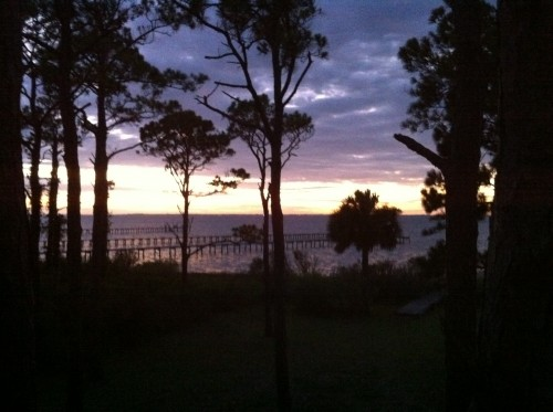 View from the house in Florida. TFM.