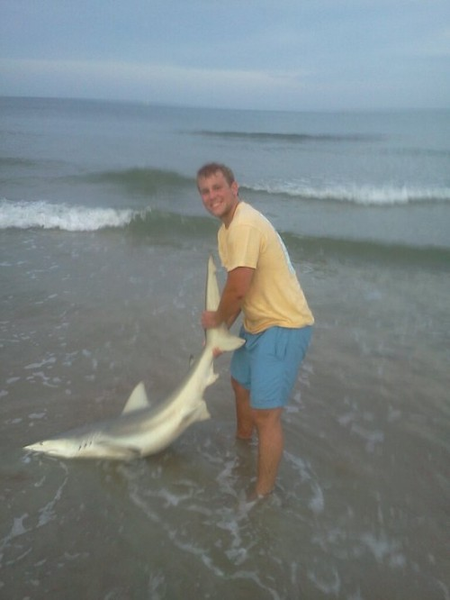 Watching Shark Week on Discovery Channel. NF. Catching your own shark off the beach. TFM.