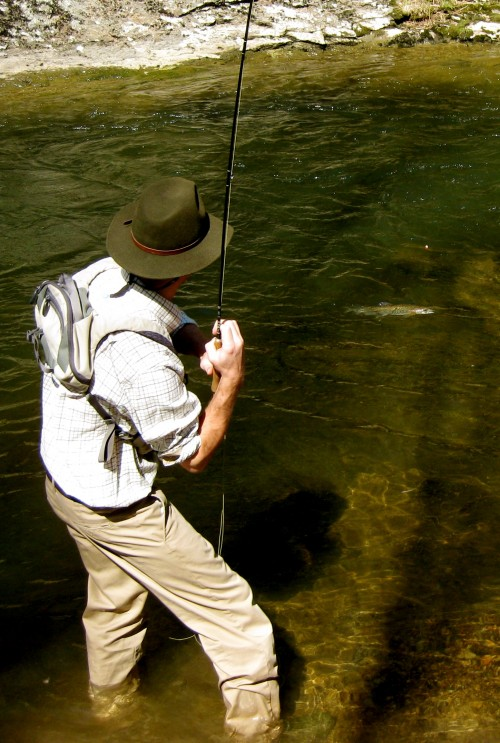 Reeling in that Rainbow on the fly rod in your private mountain stream. TFM.