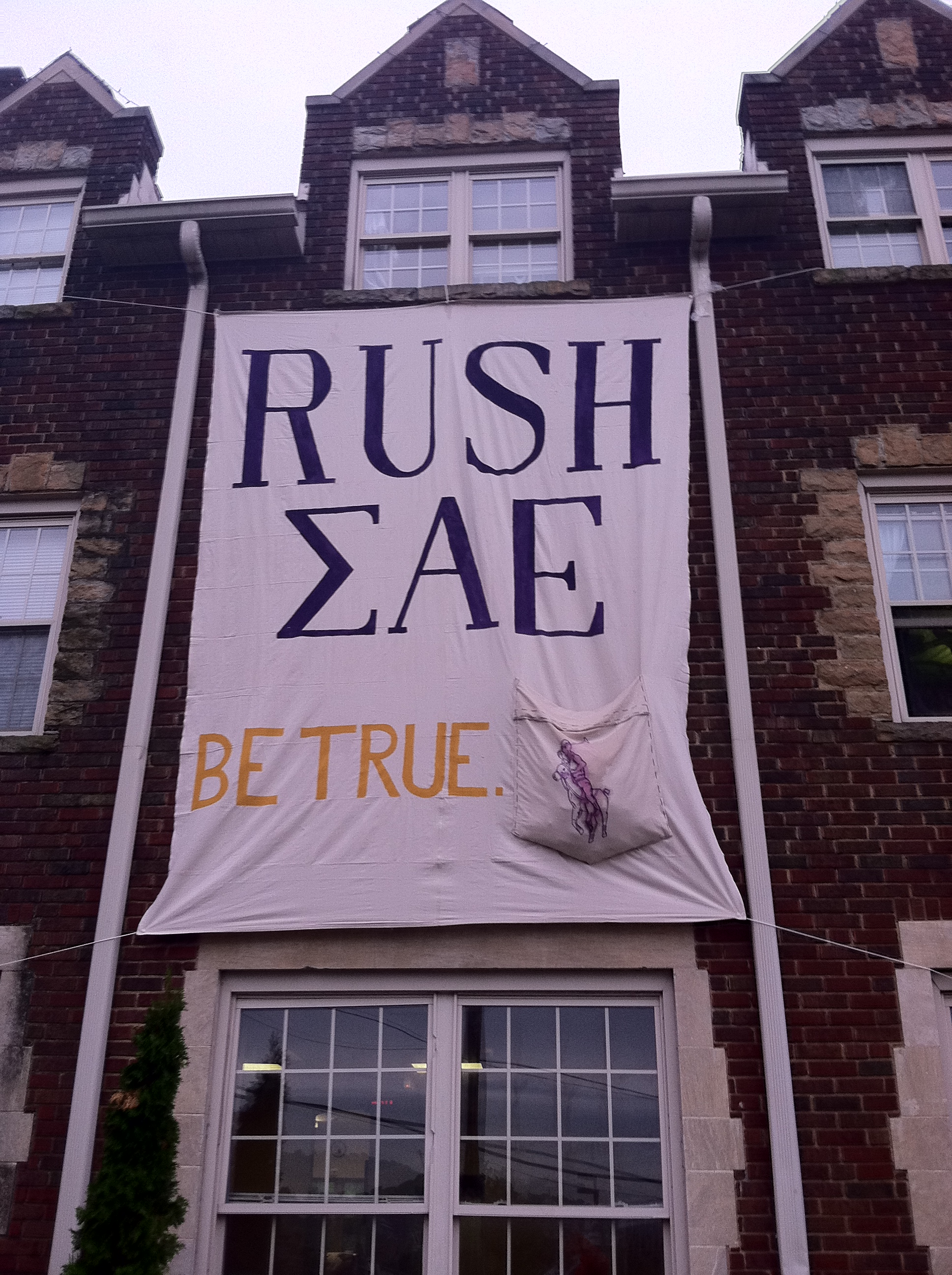 Frocket rush banner. TFM.