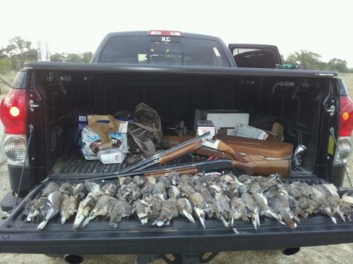 Just a little afternoon hunt. TFM.
