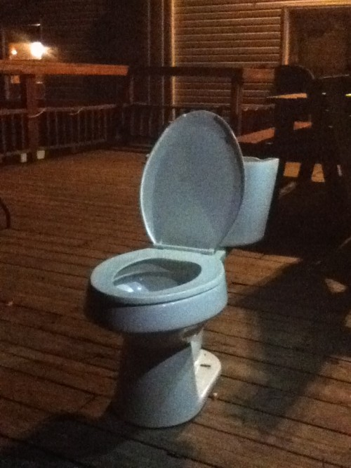 Putting a toilet on your back deck so slams don't puke in the house. TFM.