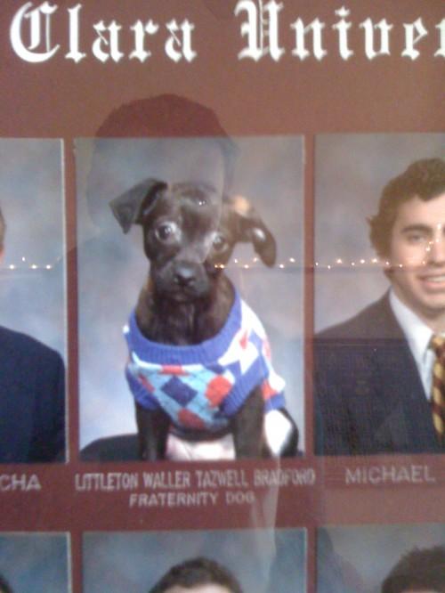 Littleton Waller Tazwell Bradford: Fraternity Dog