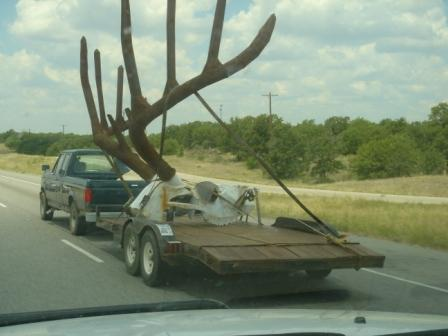 """Some new """"artwork"""" for somebody's ranch.  Whoever you are, I salute you for that. TFM."""
