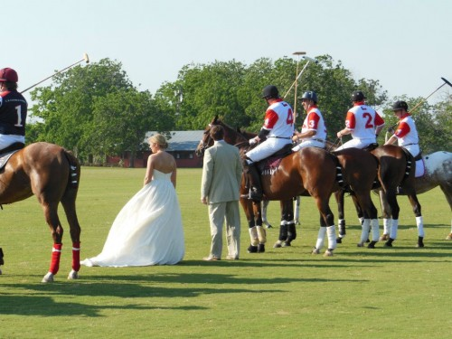 Having a polo match for entertainment at your wedding. TFM.