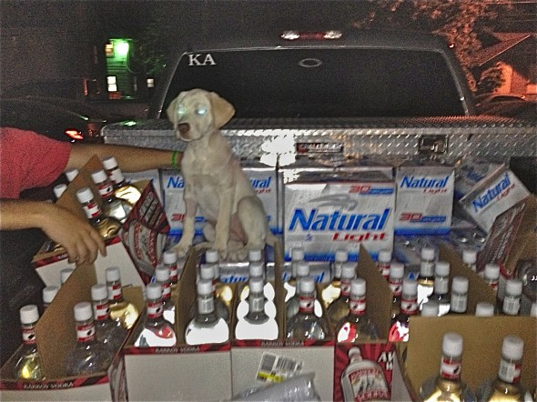 The real frathound. TFM.