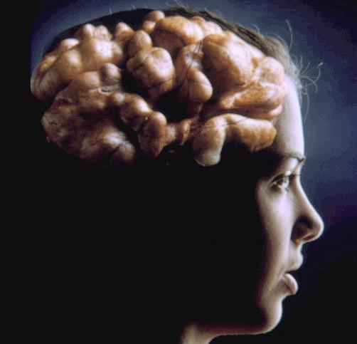 Evolution of a Sorority Girl's Mind