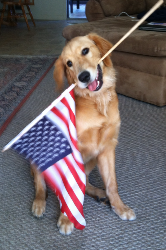 Liberty loves the USA. TFM.