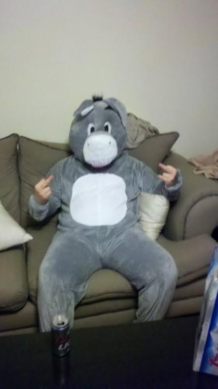 Donkey giving zero fucks this Halloween. TFM.