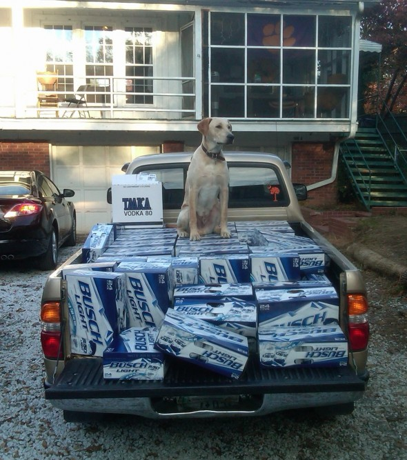 Frat hound guarding the goods. TFM.