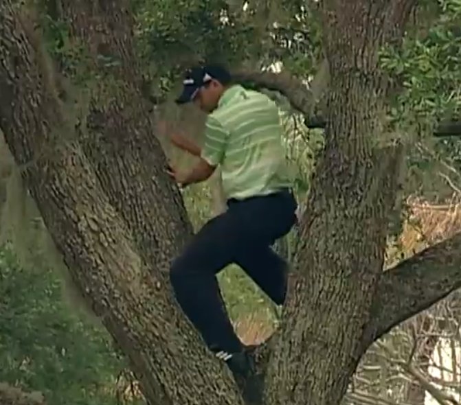 Sergio Garcia climbs a tree to hit one-handed shot