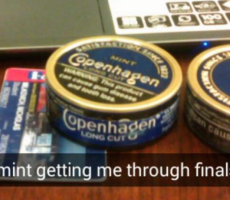 TFM's Best Snaps Of The Week