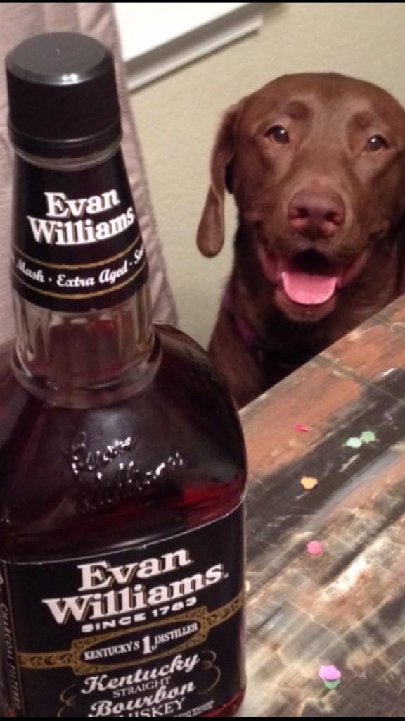 Frat hound is thirsty. TFM.