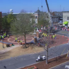 Watch This Awesome Time Lapse Of Auburn's New Trees Being Planted At Toomer's Corner