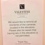 Elevator sex. TFM.