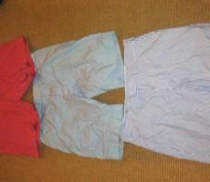 Rate This eBay Description For Frat Guy's Ralph Lauren Shorts