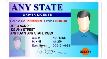 The 4 Types Of Fake IDs You'll Have In College