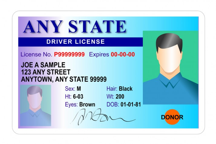 Total Frat Move | The 4 Types Of IDs You'll Have In College