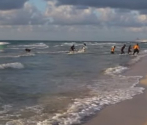 Illegal Immigrants Caught On Camera Bum-Rushing Miami Beach During Model's Photoshoot