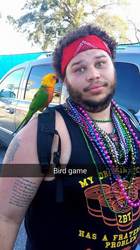Chicks dig his frird frat bird).
