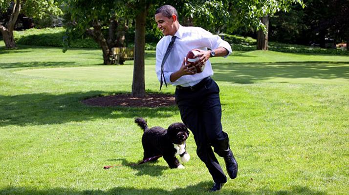 Kidnap Obama's Dog