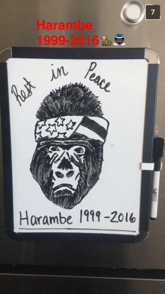 dorm whiteboard