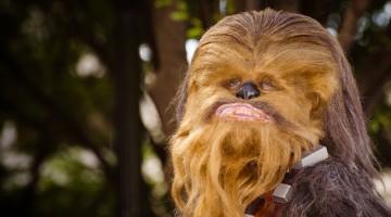 star wars day chewbacca