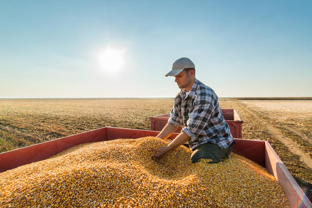 farmer frat working in field