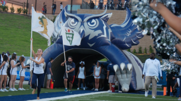 rice owls tunnel