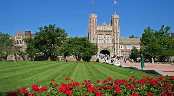 washington university in st. louis washu ar-15