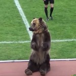 russian bear soccer game
