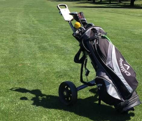 golf push cart college pros